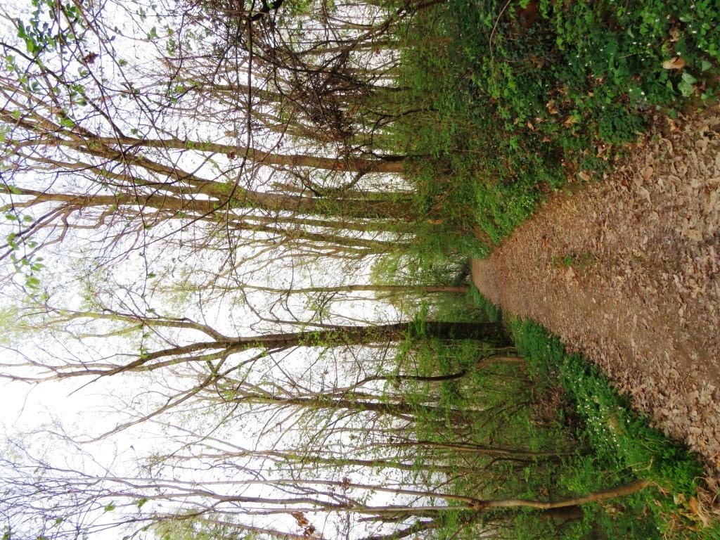 il sentiero di lucaronzoni