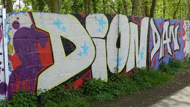 Photo: DION DAN