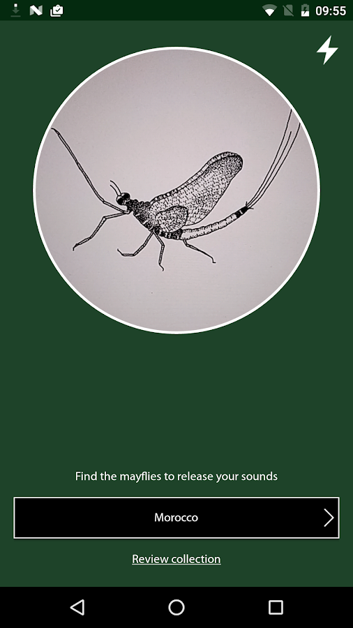 Mayfly Sound- screenshot