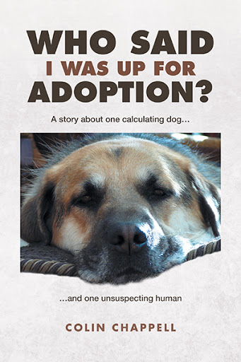 Who Said I Was Up For Adoption? cover