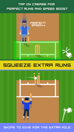 One More Run: Cricket Fever 1.62 screenshot 1716582