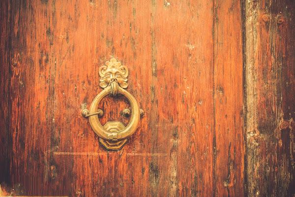 Leone alla Porta di davidedepalo