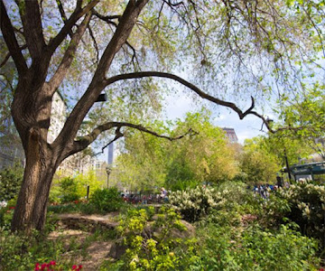 Things to Do in Gramercy Park, New York