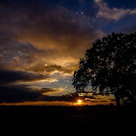 Behind my house by Stefano Pretti - Uncategorized All Uncategorized ( nature, sunset, sun )