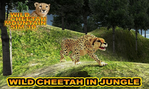 Wild Cheetah Mountain Sim 3D
