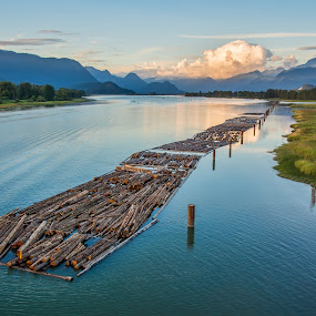 PItt River Bridge View by James Wheeler - Landscapes Travel ( port, softwood, mountain, wood, columbia, trade, pitt river bridge, travel, landscape, float, vancouver, mountains, tree, stockpile, nature, pile, industry, deforestation, lumber industry, british columbia, work, water, timber, pitt river, canada, british, logs, national, loading, piled, beautiful, pitt meadows, forestry, forest, logging, scenic, log, environmental, riverbank, mountainous, environment, trunk, industrial, harvesting, outdoor, lumber, natural, river )