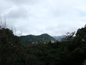向かう羽黒山が見える