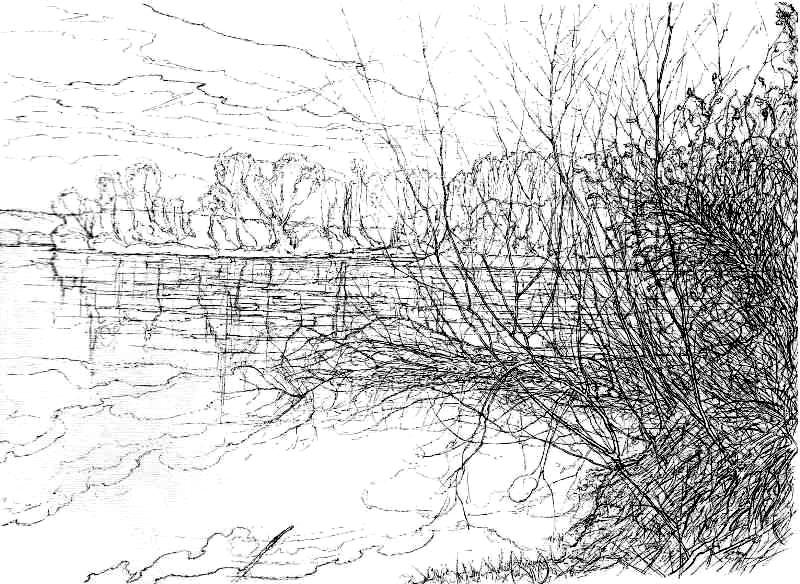THE TISA RIVER, CENTRAL TISA REGION I - Sketch (Ink).jpg
