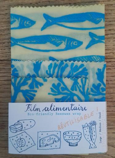 croquisnotes poissons TACA