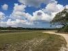 Sri. Lanka Wilpattu National Park . Driving around the park