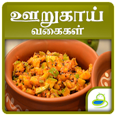 Pickles Recipes Oorugai Tamil
