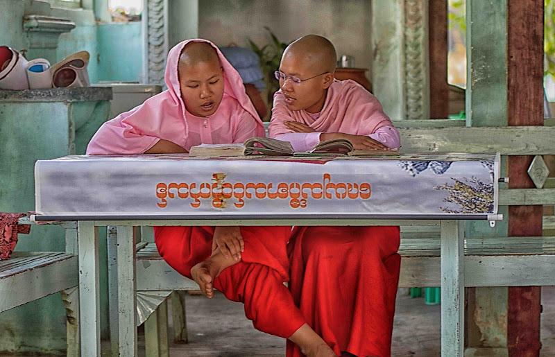 le monachelle di antonioromei