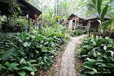 竽芯園庭園美食屋
