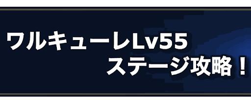 ワルキューレLv55