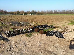 Photo: 250 bomen en struiken, je zou het niet zeggen als je het zo ziet