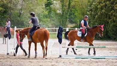 Photo: Cavalli e cavalieri: il Centro Equeste e aperto a tutti