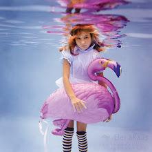 Photo: Alice Flamingo