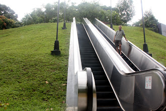 Photo: Year 2 Day 136  Very Modern - Escalators in a Park
