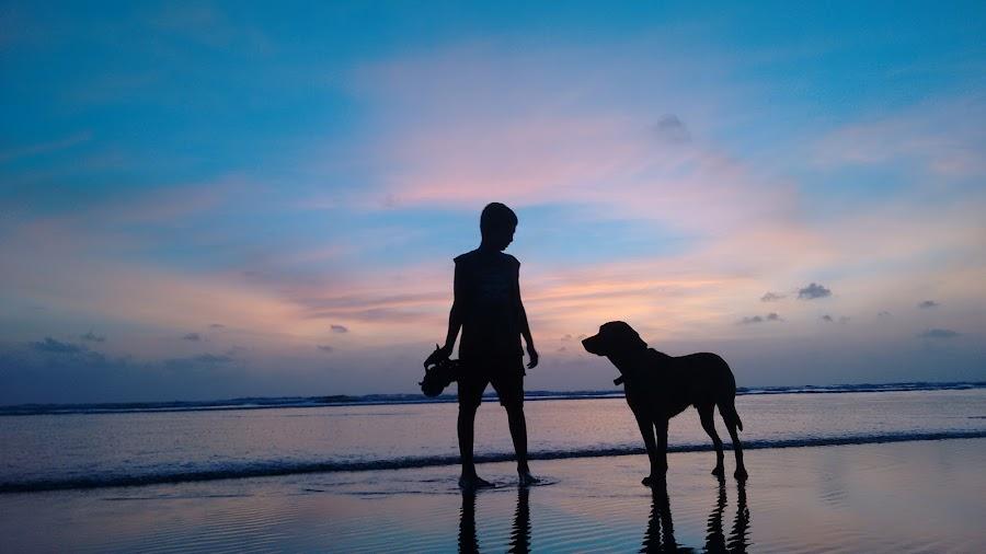 Sunset with your pet by Gayatri Pimple - Babies & Children Children Candids ( blue sky, sky line, friendship, beauty, kid, sunsets, boy, sea, beaches, seascape, children, pet, sky, waves, blue skies, nature, beauty in nature, water, friends, sand, blue, beach, sunset, animal, evening, dog, child )