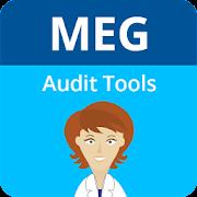 MEG Audit Tool
