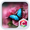 Flower and Butterfly Theme icon