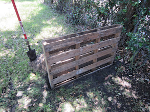 Photo: Step 2: With the first pallet in place I can move to the next, which will create a span of about 4.5 - 5 ft. The length of the shovel is a good guide for the span.