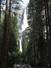 Photo: Lower and Upper Yosemite Falls