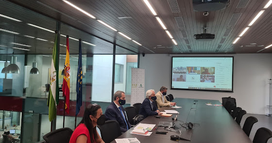 ¿Y si Almería sufriera un gran seísmo? El simulacro que prepara ya Andalucía