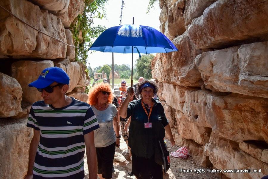 Гид в Израиле Светлана Фиалкова на экскурсии в сад камней и кактусов. Тель-Авив. Израиль.