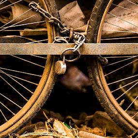 Sacurity First by Avanish Dureha - Transportation Other ( avaniish dureha, potters village, new delhi, dureha@gmail.com, india )