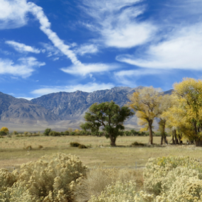 by Jennifer Watkins Odom - Landscapes Mountains & Hills (  )