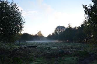 Photo: jardin de Sabot, ou quoi reste...du 30