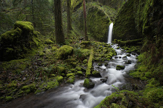 """Photo: My bones ache for some time out in the Gorge. Honestly this summer has sucked for me regarding photography. I know I should be out shooting no matter the conditions but the reality is, I'm spoiled. I'm used to perfect conditions, no crowds, and lots of free time. This summer has not afforded me that. I assure you that I will make up for it this fall. I've got a permit for the Enchantments in September that I'm super stoked about and if what """"they"""" is saying according to those around me it's going to be a cold and wet winter. Fingers crossed! This heat, the blue skies, the lack of rain... really? I live in Oregon... I want cold, clouds, and lot's of wet. Bring it on! Now!  #landscapephotography  #exploregon  #pnw  #oregon  #waterfall"""
