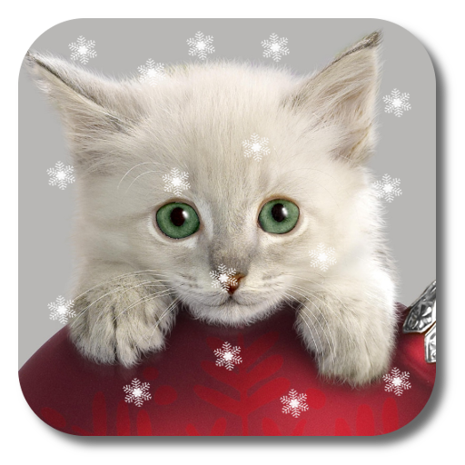 Xmas Cat Live Wallpaper Aplikasi Di Google Play