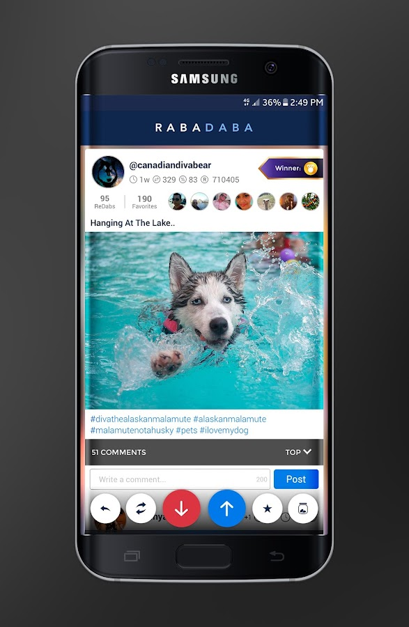 RABADABA: Pet Lover Community- screenshot
