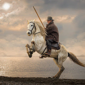 Twighlight Cowboy by Adrian Lines - Animals Horses