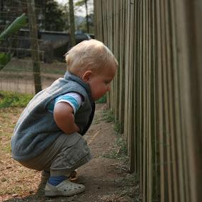 by Frederik Koorzen - Babies & Children Toddlers