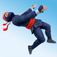 Ninja Flip