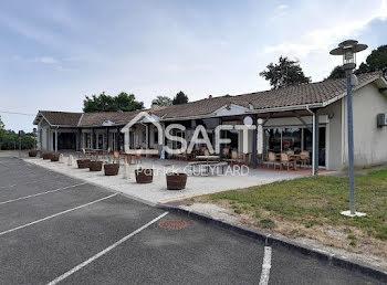 locaux professionels à Saint-Caprais-de-Blaye (33)