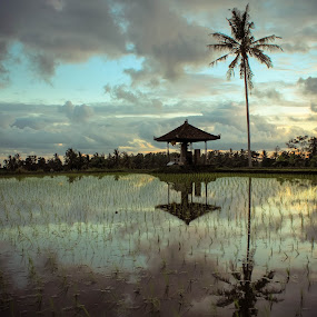 reflections by Putu Anggara - Landscapes Prairies, Meadows & Fields