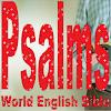 Best Psalms Audio-Book APK