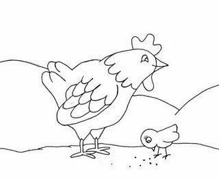 desenho colorir galinha