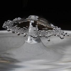 Splash by Simon  Rees - Abstract Macro