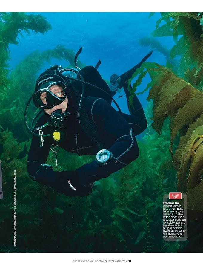 Sport Diver- screenshot
