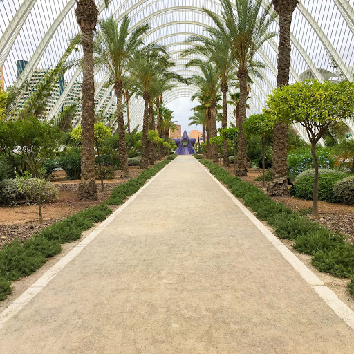 valencia-L'Umbracle-1.jpg - The indooor garden walkway leading to the entrance of the City of Arts and Sciences in Valencia, Spain.
