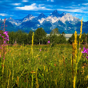 Majestic Teton Mountain Range by Robyn Vincent - Landscapes Mountains & Hills ( mountains, wyoming, landscape photography, teton mountain range, scenic vistas, jackson hole, grand teton )