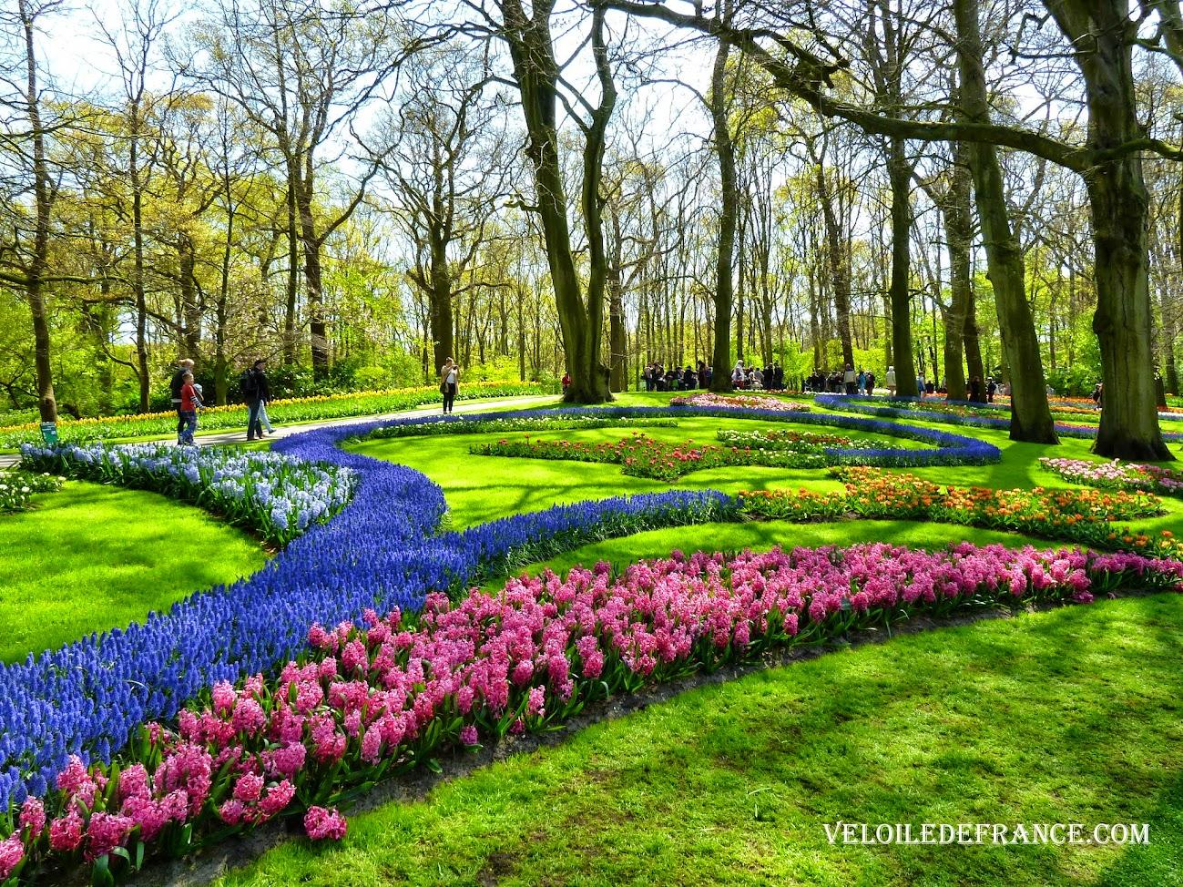 Le Parc de Keukenhof - Circuit à vélo aux Pays-Bas de Leiden (Leyde) au parc de Keukenhof par veloiledefrance.com