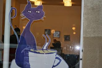 Photo: Bar à chat - Paris XIe - 9,rue Sedaine