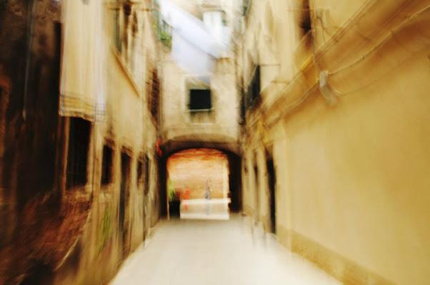Le scritture di Venezia di LIDIA MALLIA