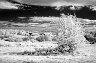 Photo: Bringsty Common (Clive Haynes)